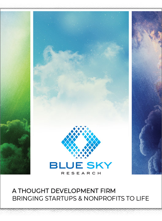 Blue Sky Research brochure image